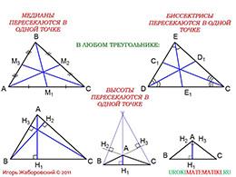 """Презентация """"Медианы, биссектрисы и высоты треугольника"""" слайд 5"""